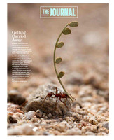 Arizona Highways Magazine June 2018
